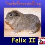 Felix2-l