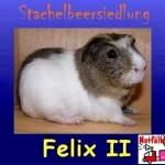 Felix2-r